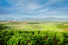 Rural Vietnam at Don Duong province Stock Photos