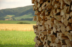 Rural view. Firewood collected ob green field Royalty Free Stock Images