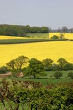 Rural View. A View Of The English Countryside Royalty Free Stock Image