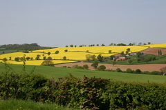 Rural View. A View Of The English Countryside Royalty Free Stock Photo