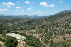 Rural view from the ancient Greek city Mycenae, Royalty Free Stock Image