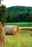 Rural view with hay bales Royalty Free Stock Photography