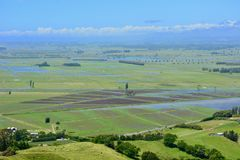 Papamoa Hills Regional Park, Papamoa, New Zealand – 25 Dec 2018: fields flooded after heavy rain over previous days. stock photos