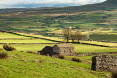 Rural view of the Yorkshire Dales Royalty Free Stock Photography