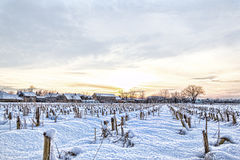 Rural village home in winter time next to cornfield Royalty Free Stock Photos