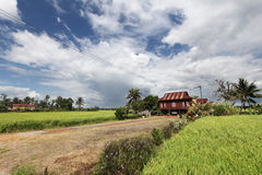 Rural village house in paddy field Royalty Free Stock Photos