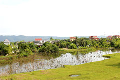 Rural village  with pond and bamboo trees Royalty Free Stock Images