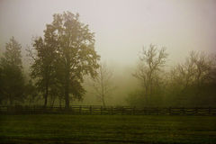 Rural village scenery in morning fog Stock Images