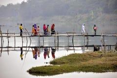 Rural villagers crossing a bamboo bridge at bardhaman west bengal india