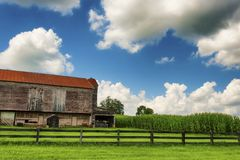 Barn Pasture and Cornfield under cloudy skies stock images