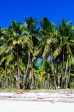 Rural white sand beach on tropical island Royalty Free Stock Photo
