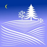 Rural winter evening landscape with spruce Stock Images