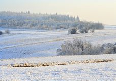 Rural winter landscape Stock Photos