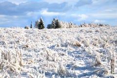 Rural winter landscape Stock Photos