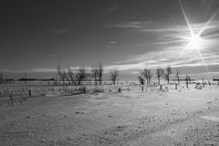 Rural winter landscape. Black and white landscape in the countryside in winter Royalty Free Stock Photography