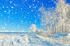 Rural winter landscape a with the blue sky, a field and the fore Royalty Free Stock Images