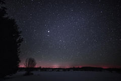 Rural Winter Landscape at night with trees and stars Royalty Free Stock Photos