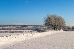 Rural winter landscape Royalty Free Stock Image