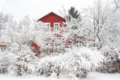 Rural winter landscape with wooden house and trees in snow Stock Photo