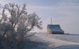 Rural Winter Morning Royalty Free Stock Photo