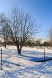 Rural winter`s scene Stock Photos