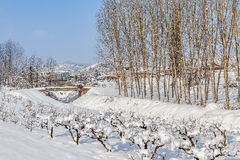 Rural winter view. Royalty Free Stock Image