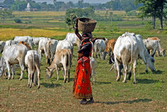 Rural Woman Stock Photography