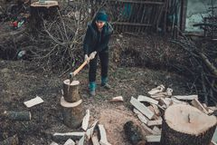 A rural woman shoots an ash tree wood for harvesting for the winter with an ax royalty free stock photos