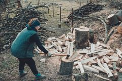 A rural woman shoots an ash tree wood for harvesting for the winter with an ax royalty free stock photography