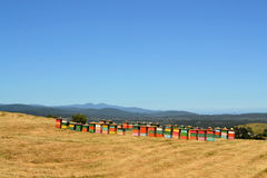 Rural wooden beehives on hilltop Royalty Free Stock Image