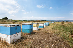 Rural wooden beehives on meadow Royalty Free Stock Photography