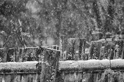 Rural wooden fence during a snowfall Royalty Free Stock Image