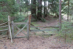 Rural wooden gate and fence in the forest Royalty Free Stock Image