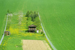 Rural wooden house on green field Stock Image