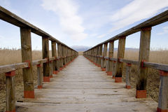 Rural wooden walkway Stock Photography