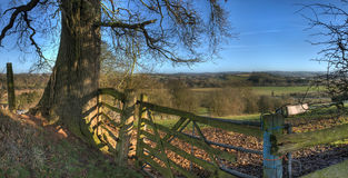 Rural Worcestershire in winter. Old gate an oak tree overlooking Worcestershire, England Stock Image