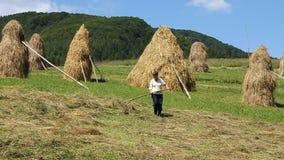 Rural worker stock video footage