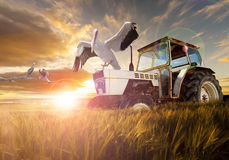 Rural world,farma land and  travel concept Royalty Free Stock Photography