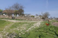 Rural yard rustic scene Stock Photography