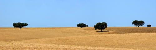 Rurale fotografie stock libere da diritti