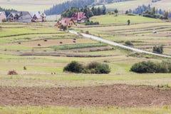 Rurale - la Polonia. Immagine Stock Libera da Diritti