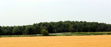 Ruralscape. Countryside picture from Southern Quebec stock photo