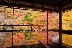 Rurikouin,京都市,秋天颜色的日本 库存照片