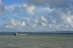 Rusa in den skumma hamnen Royaltyfri Bild