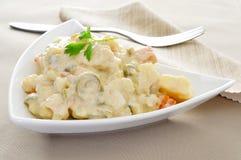 Rusa spagnolo di ensaladilla, insalata russa Immagini Stock Libere da Diritti