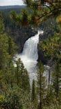 Rusa vattenfallet Fotografering för Bildbyråer