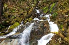 Rusa vattenfallet - Alaska Arkivbild