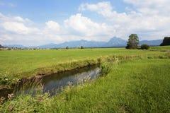 Ruscello in Baviera Immagini Stock