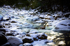 Ruscello corrente nel Vermont fotografia stock