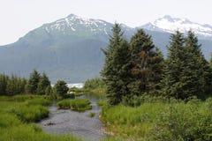Ruscello della montagna con le montagne nei precedenti immagini stock libere da diritti